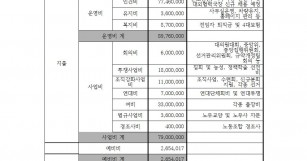 한국비정규교수노동조합 2017년 예산